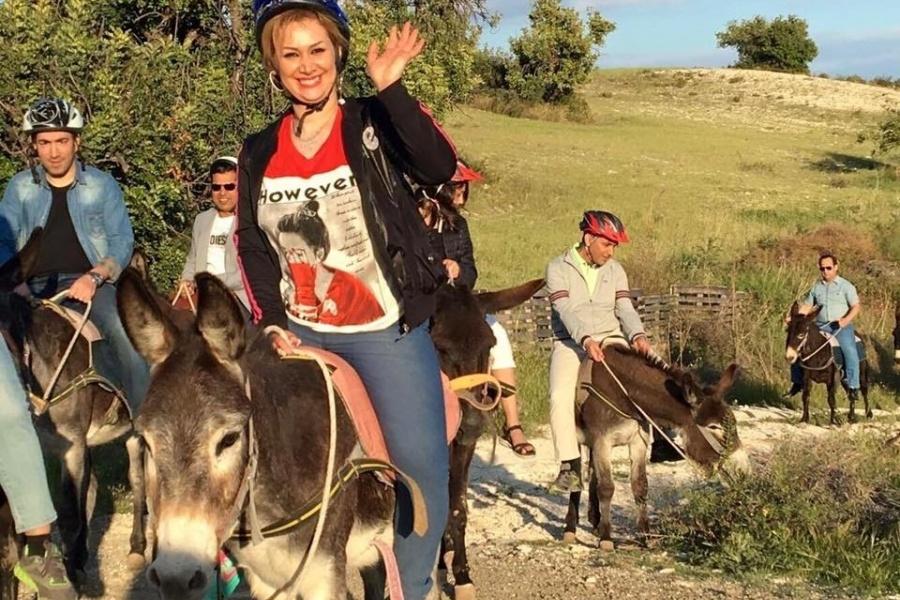 Donkey ride experience